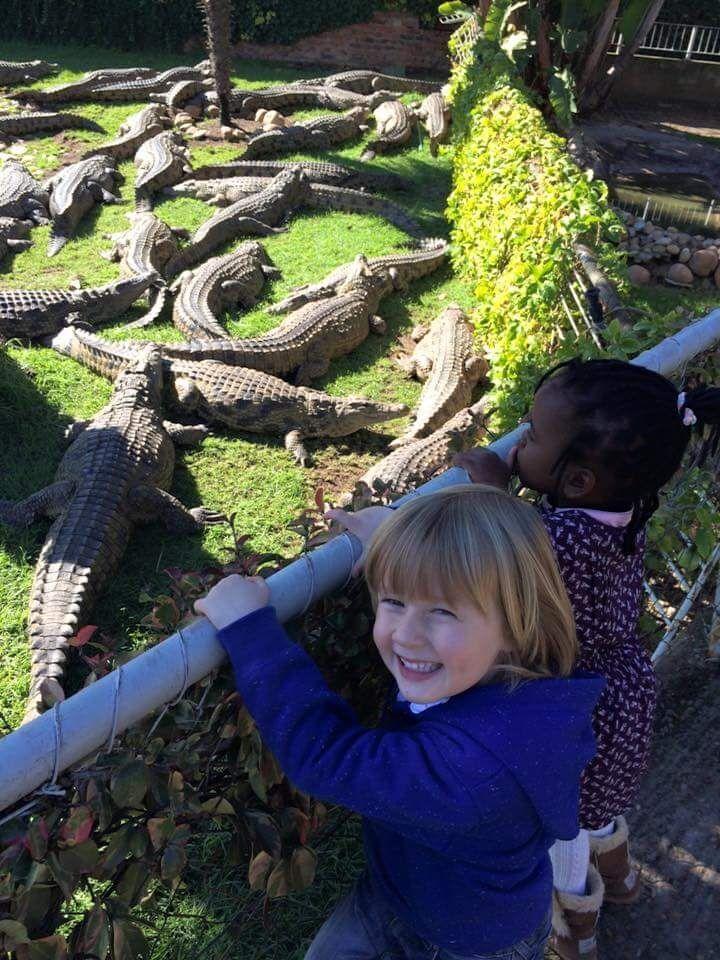African Croc Dive kids