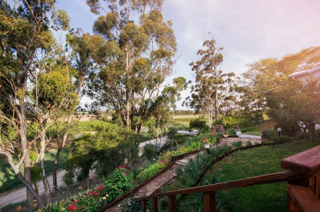Good Hope Farm Bed & Breakfast - Accommodation - Addo - Eastern Cape