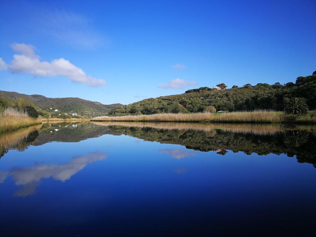 Wild Olive Farm, accommodation, Goukou River Valley, Still Bay, Western Cape
