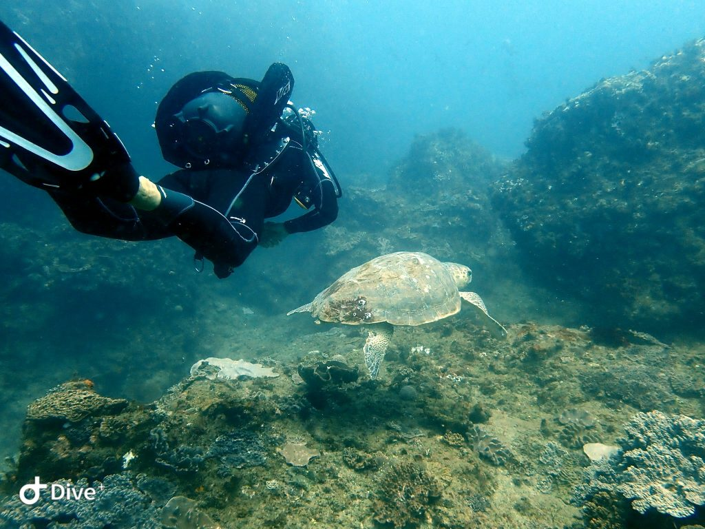 SeaXplore Dive Center - Sodwana Bay - KwaZulu-Natal 1
