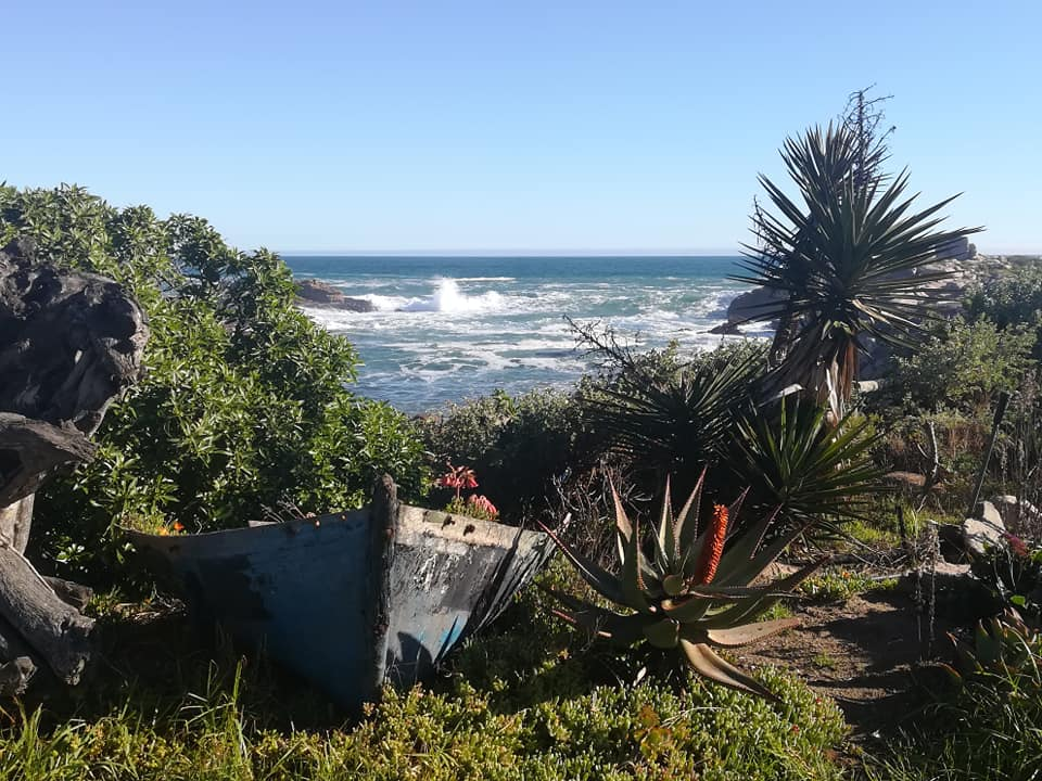 White Sands Guesthouse - Lamberts Bay - Western Cape