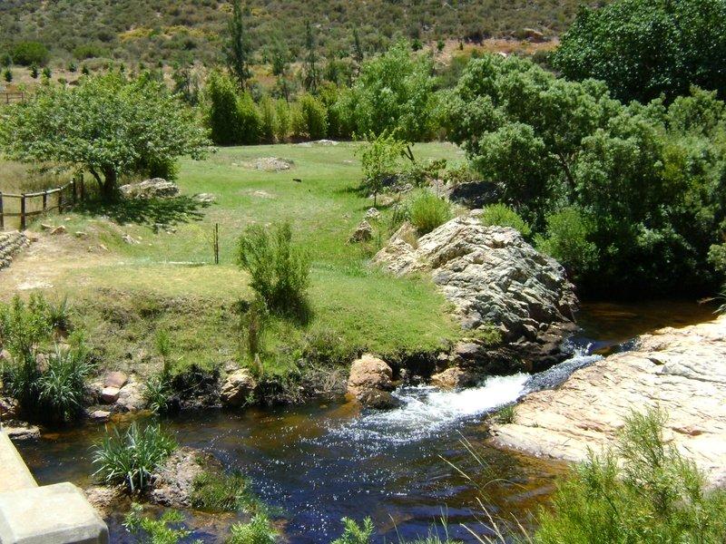 Boskloof Swemgat, Clanwilliam, Western Cape (4)