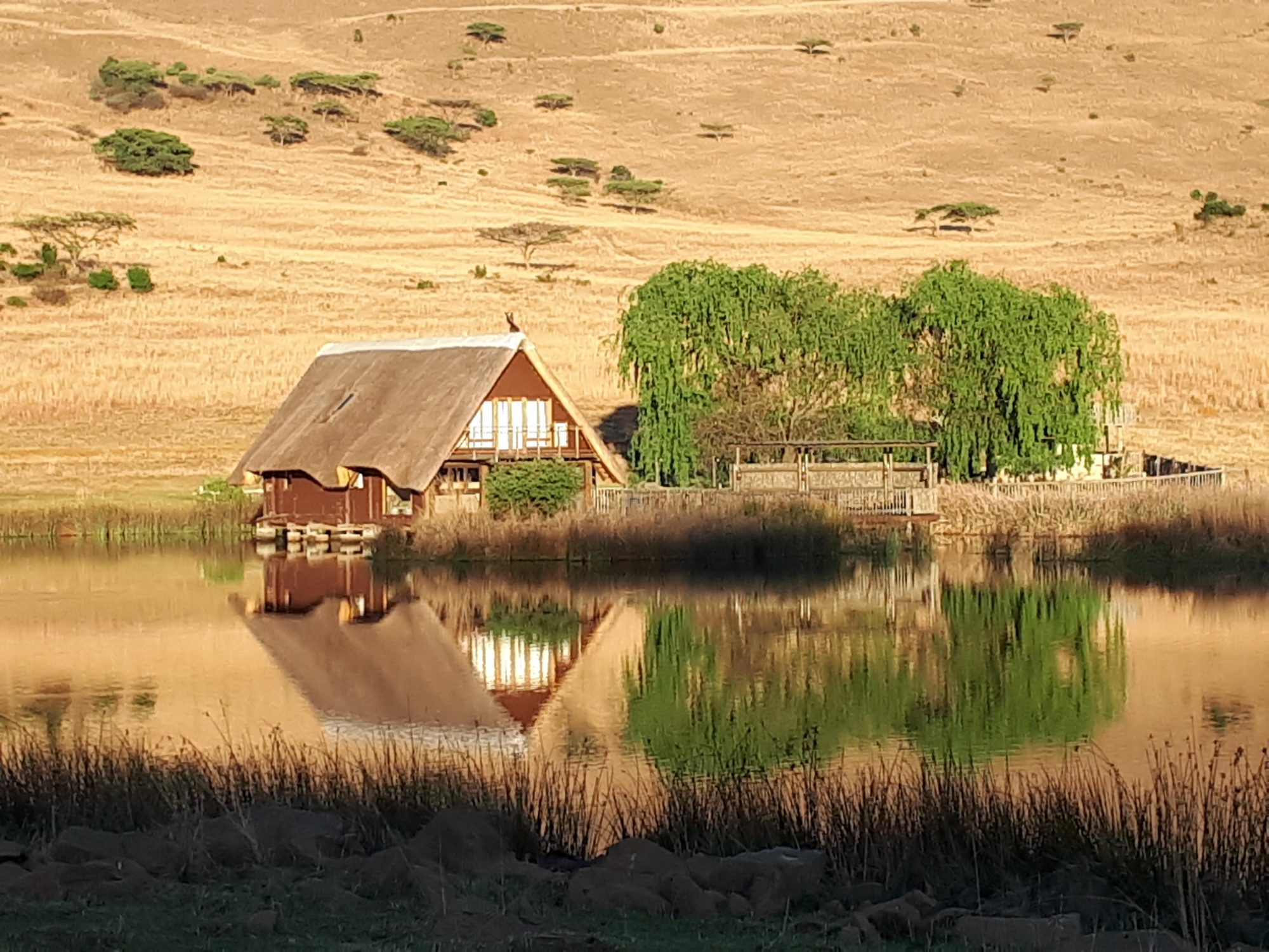 Thatcher's Rest, Self-Catering Cottage - Ladysmith, KwaZulu-Natal (3)