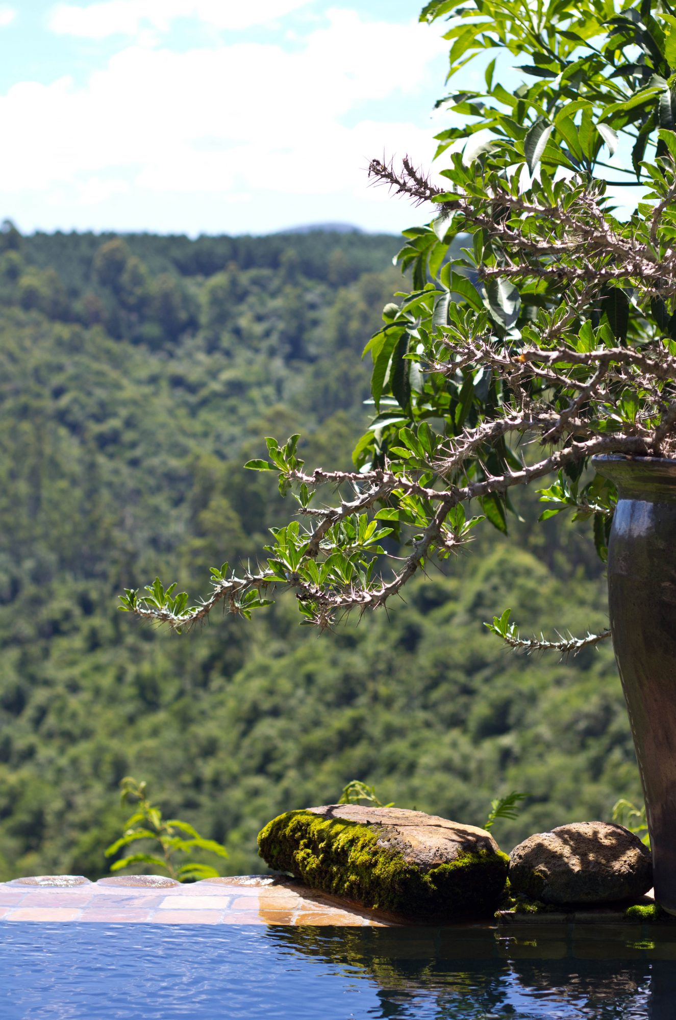 Tanamera Lodge, Hazyview, Mpumalanga (9)