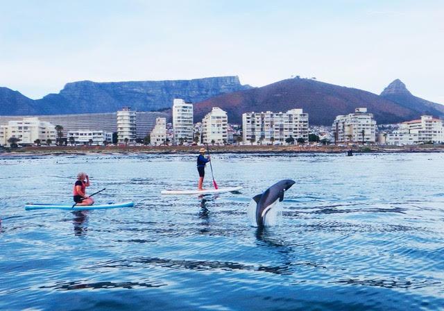 SUP Cape Town