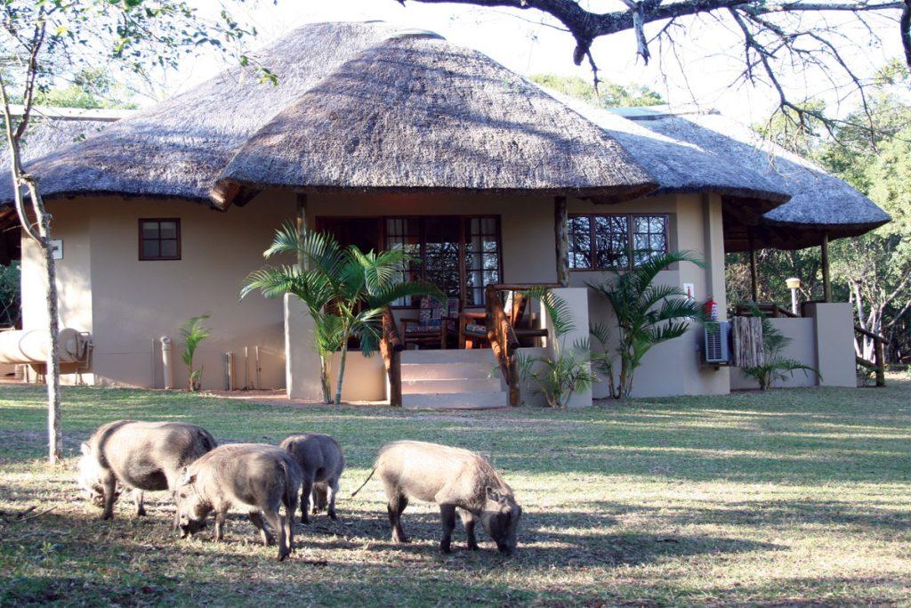 Bonamanzi Private Game Reserve