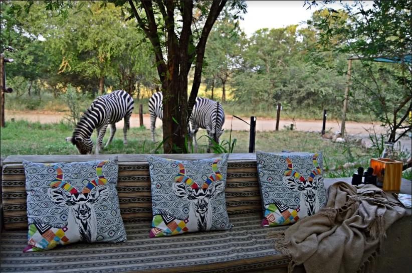 Foxy Crocodile Safari & Bush Retreat
