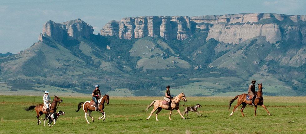 Top Activities in the Drakensberg